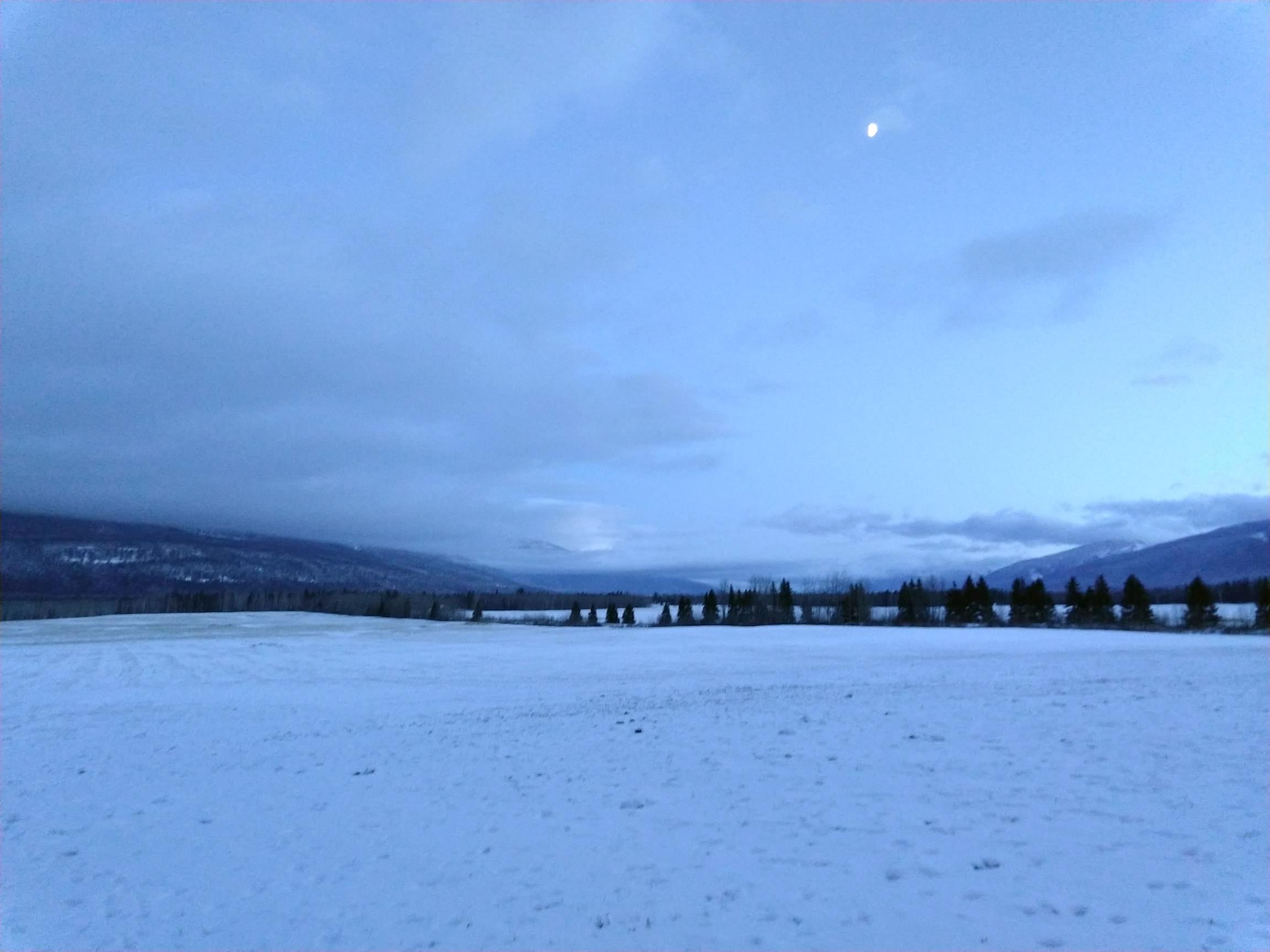 Backfield at dusk